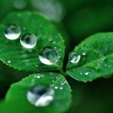 保湿や潤いのイメージの図