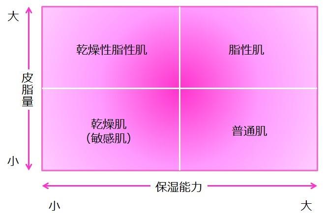肌質タイプの図