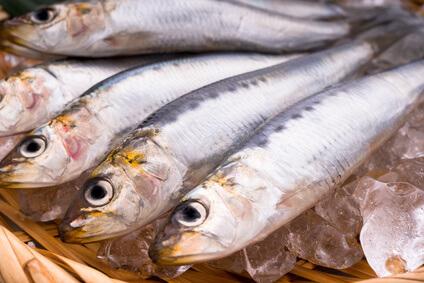 美肌効果が期待できる魚介類