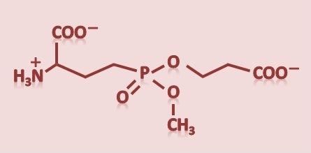 エイジングケア化粧品成分ナールスゲンの特徴