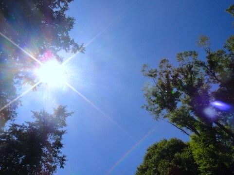 紫外線を対策