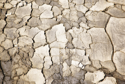 Details of a dried cracked earth soil background. Pattern of dried earth soil. お肌の乾燥のイメージ写真