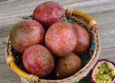 キュアパッションの原料のパッションフルーツの果実