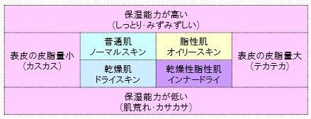 お肌の質・タイプの分類の図