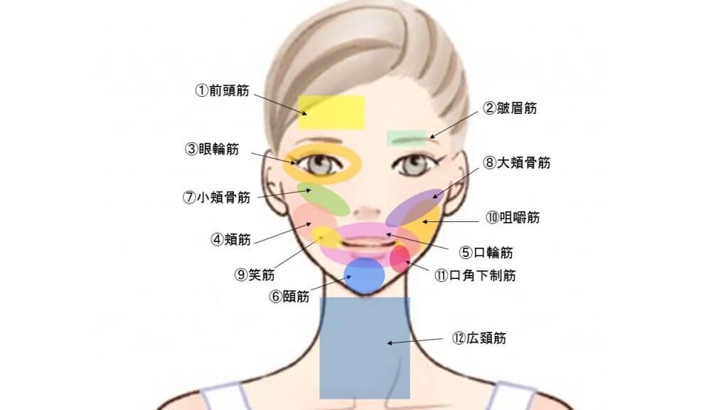 なくなったお肌のハリを取り戻すための表情筋トレーニング