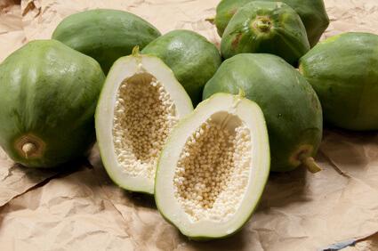 角質肥厚の対策に効果的なパパイン酵素の原料