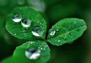 保湿や潤いをイメージする水の写真