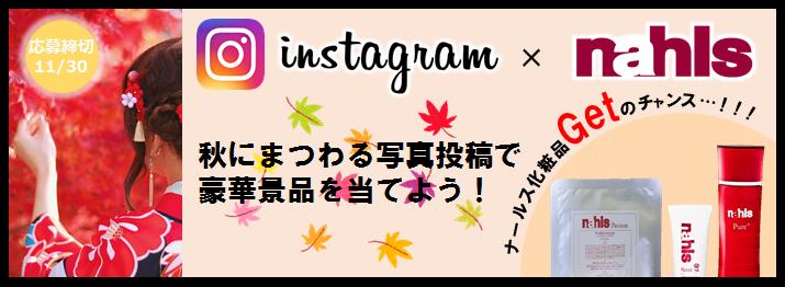 インスタ×秋にまつわる写真投稿でナールスGet!