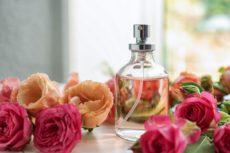 抗うつ効果のあるバラの香り成分「フェニルエタノール」