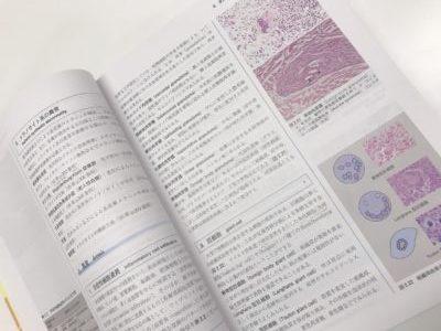 新しい皮膚科学の中面の写真