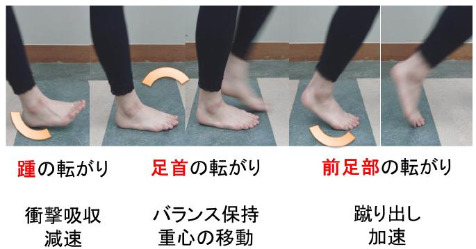 歩行中の足の動きと役割