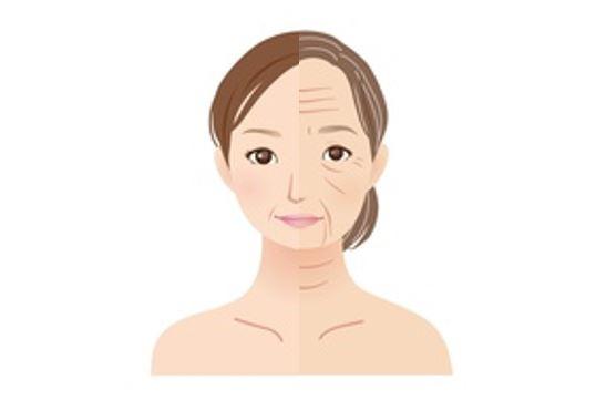 グリシンで老化症状が緩和されるイメージ