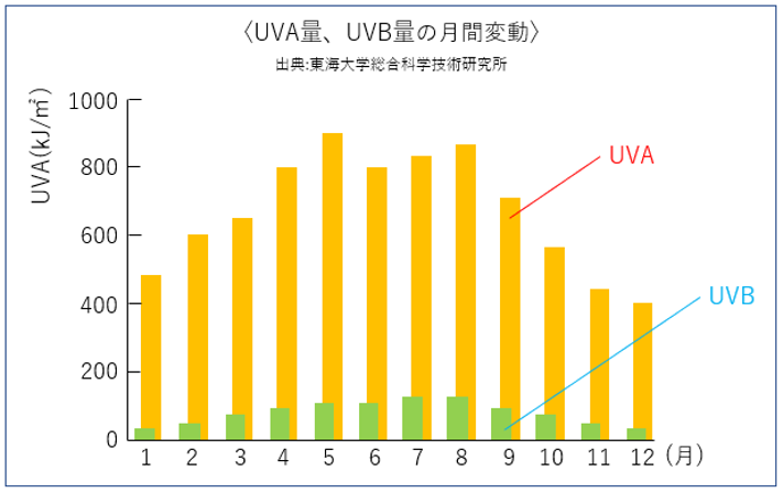 UVA量、UVB量の月間変動のグラフ