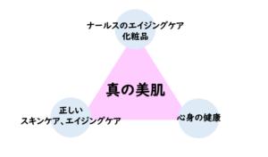 美肌になるために必要な3要素を表す図