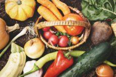紫外線対策ができる野菜のイメージ
